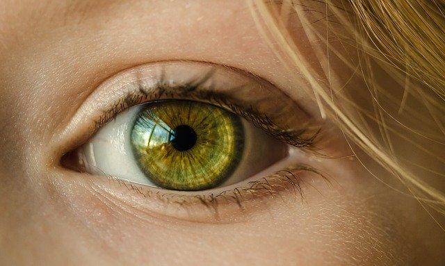 Giornata mondiale della vista